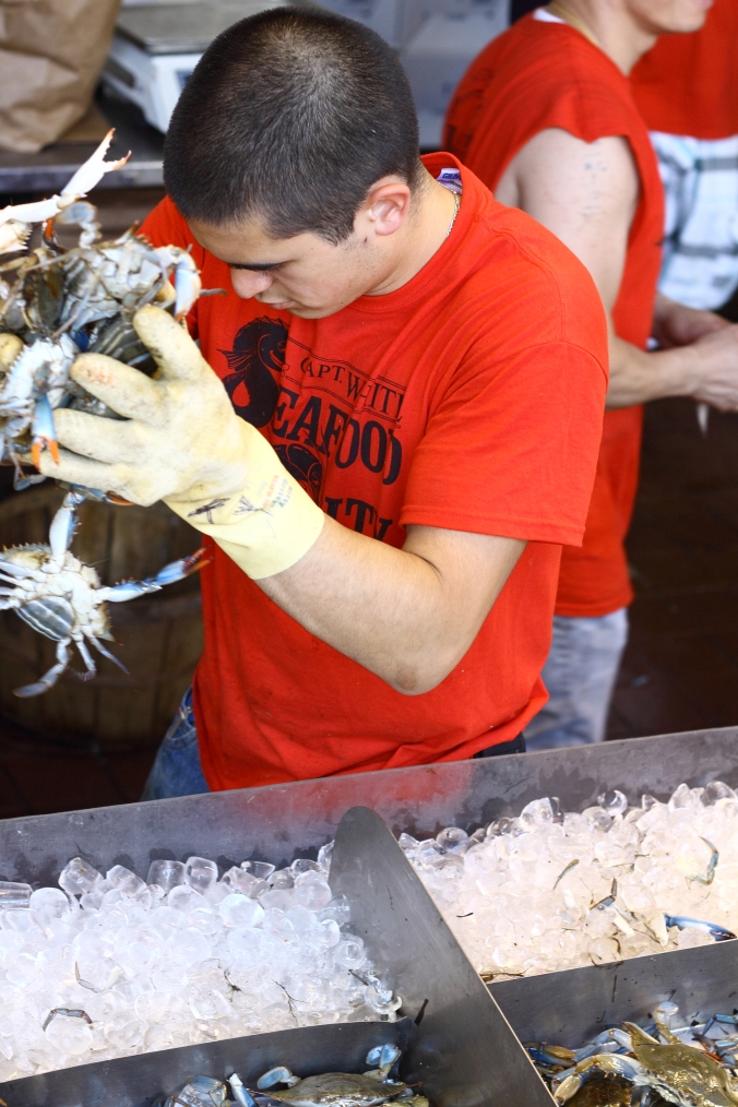 grabbing crabs